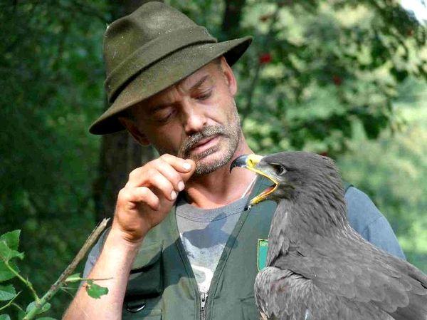 Ein Adler auf dem Arm von Dieter Betz im Greifvogelpark Grafenwiesen