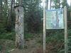 Auf verschiedenen Infotafeln erfahren Sie mehr über die Natur des Bayerischen Waldes