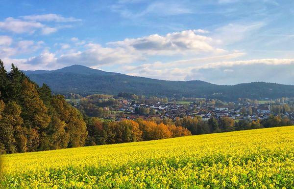 Grafenlwiesen liegt umgeben von Kaitersberg und Hohenbogen
