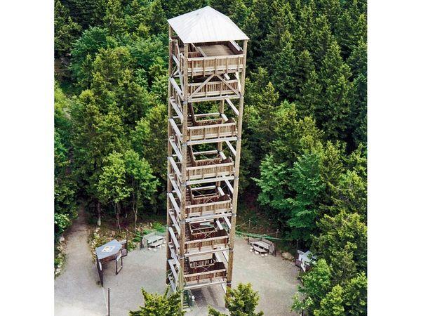 Ein Holzbauwerk ist der Aussichtsturm auf dem Haidel im Dreiländereck Bayerischer Wald