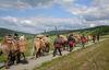 Säumerzug bei Grainet beim Jubiläum 1000 Jahre Goldener Steig