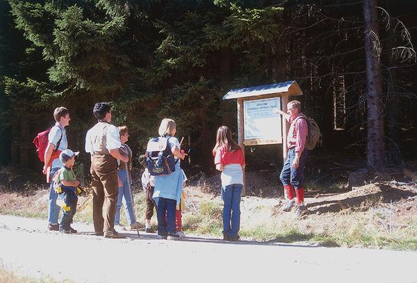 Infotafel am Waldglashütten-Wanderweg bei Grainet