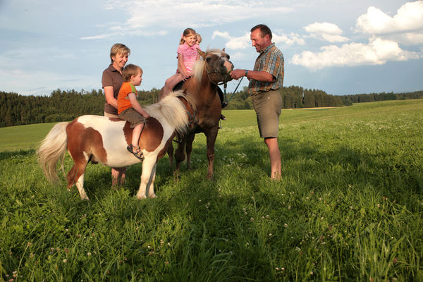 Zwei Kinder sitzen auf Ponys. Die Eltern stehen daneben.-©Sepp Niederbuchner