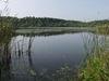 Werlsee bei Grünheide, Foto: Seenland Oder-Spree