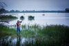 Tierbeobachtung in Güstebieser Loose, Foto: Tourismusverband Seenland Oder-Spree e. V./Florian Läufer