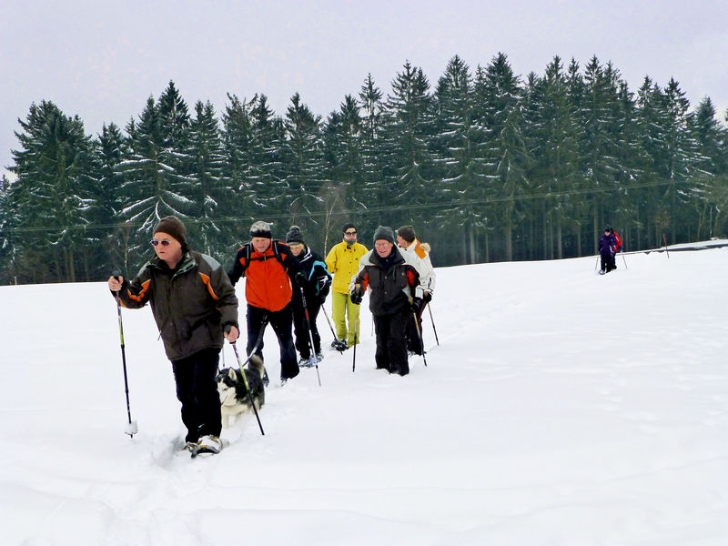 Schneeschuhwandern in Haibach