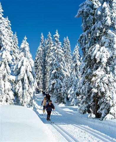 Langlaufen durch den tiefverschneiten Bayerischen Wald
