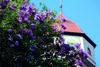 Römerturm Haigerloch