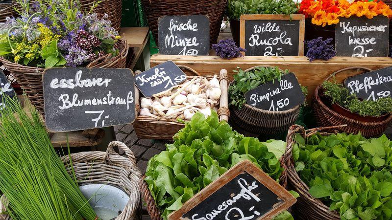 Marktstände unterschiedlichster Art warten auf die Besucher