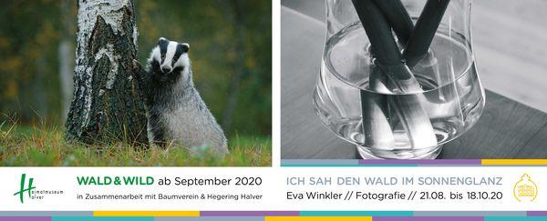 Neue Ausstellungen in der Villa Wippermann
