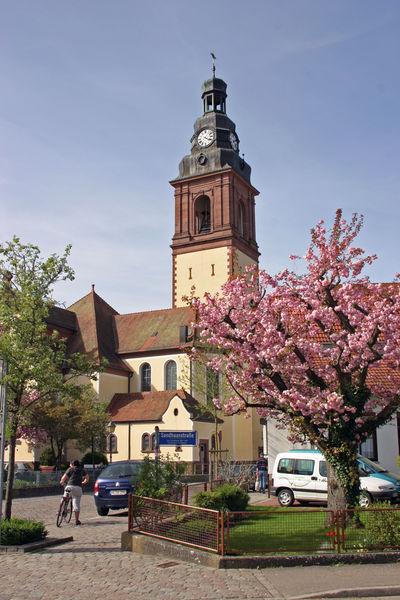 Die 1240 erstmals urkundliche erwähntte Kirche St.Arbogast in Haslach