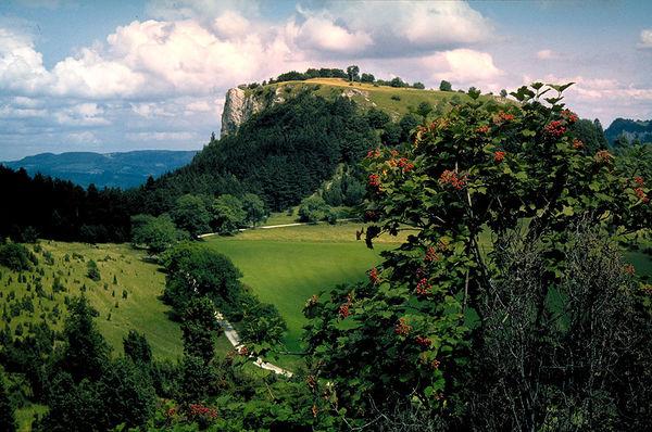 Naturschutzgebiet Schafberg-Lochenstein