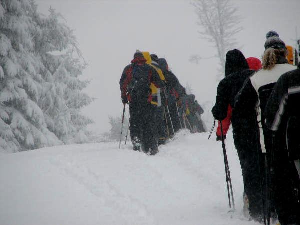 Schneeschuhwandern auf den Dreisessel