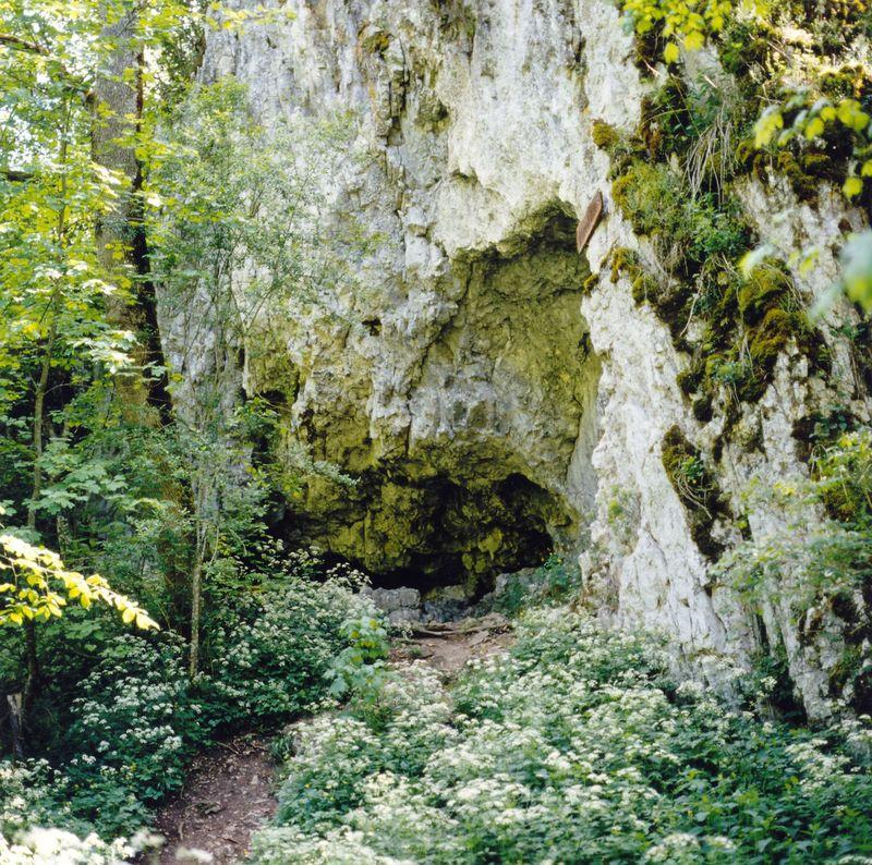 Bärenhöhle - Bild 1