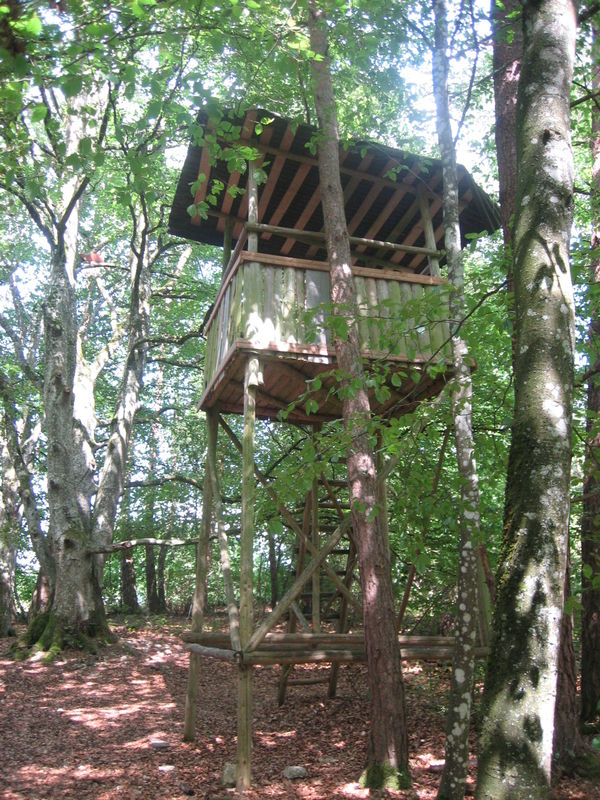 Wald-Erlebnis-Pfad Indelhausen  - Bild 3