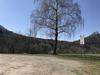 Parkplatz Grillplatz Bollemer Wasen