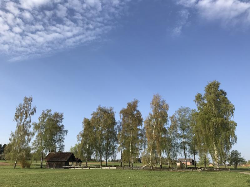 Spielplatz Ehrenwald von der Ferne