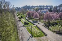 Heidenheim_Brenzpark