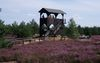 Aussichtsturm Henzendorfer Heide, Foto: TV Seenland Oder-Spree