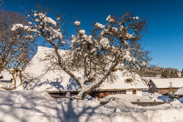 Freilichtmuseum Klausenhof - Winter