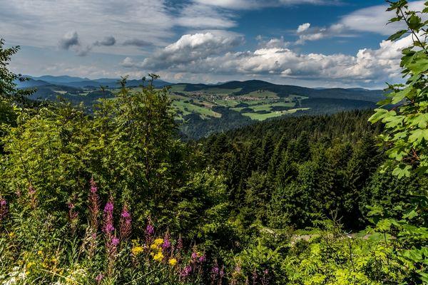 Aussicht vom Hornbergbecken