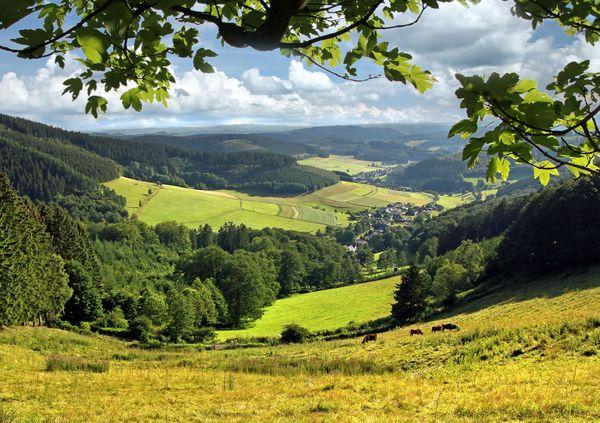 Blick ins Tal von der Oberndorfer Höhe