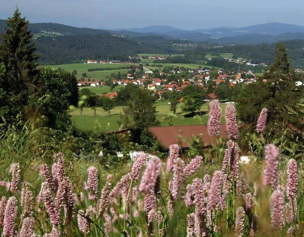 Hinterschmiding im Bayerischen Wald