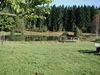Blick auf den Landschaftsweiher in Hinterschmiding im Dreiländereck Bayerischer Wald