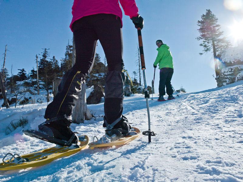 Schneeschuhwandern in Hinterschmiding | Bayerischer Wald