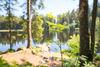 Blick auf Mathisleweiher mit jungem Baum im Vordergrund