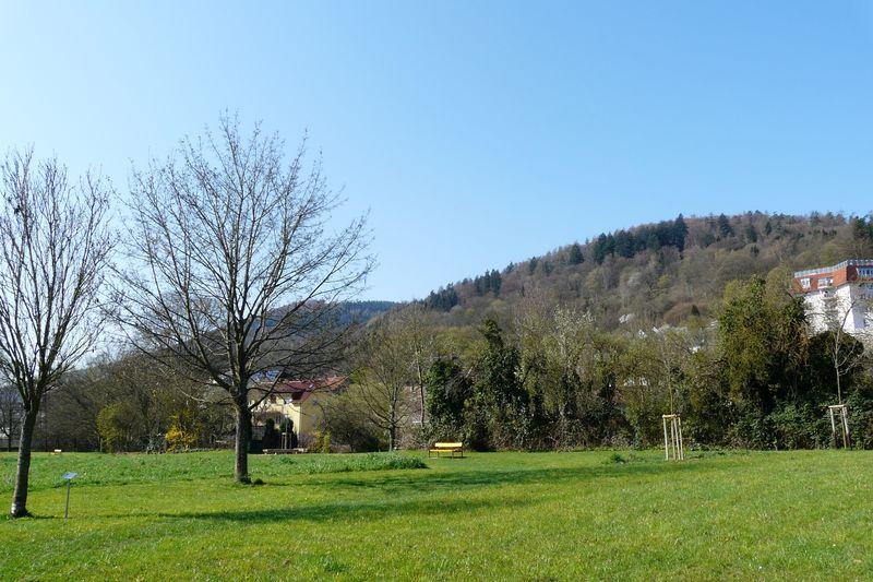 Familienpark am Neckar