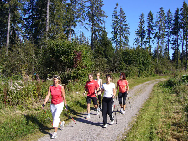 Nordic Walking Höchenschwand