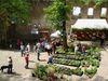 Natur pur beim Gartenmarkt auf der Burgruine Hilgartsberg
