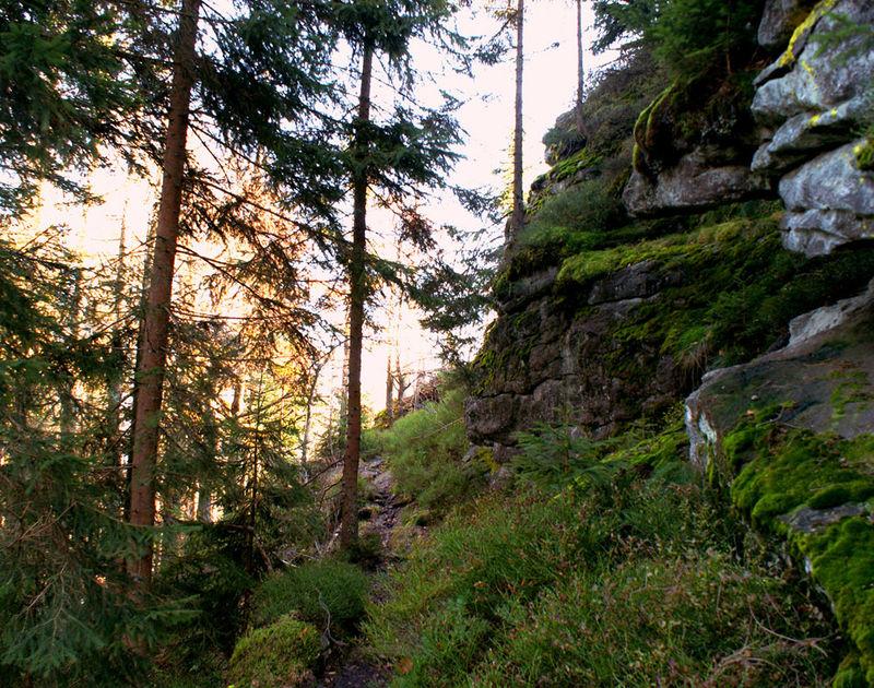 Das Felswandergebiet in der Umgebung der Ortschaft Schönbrunn a. Lusen