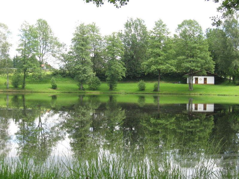 In ruhiger Lage befindet sich der Naturbadeweiher in Haslach bei Hohenau