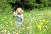 Blumenwiese beim Naturerlebnispfad Häulesrain