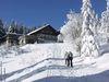 Schneeschuhtour zur Kötztinger Hütte am Bergkamm-Kaitersberg