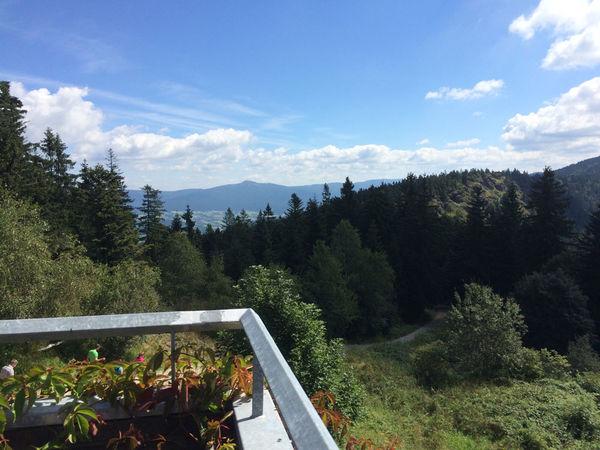 Wunderschöner Ausblick von der Aussichtsterrasse