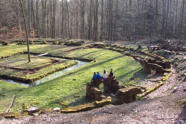 Bärenzwinger im WaldPark Schloss Karlsberg in Homburg