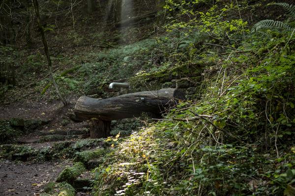 Armbecken an der Kneippanlage Homburg Karlsbergweiher