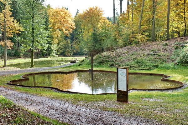 Tosbecken im WaldPark Schloss Karlsberg in Homburg