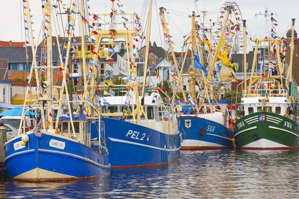 Die die aktive Fischkutterflotte im Husumer Außenhafen