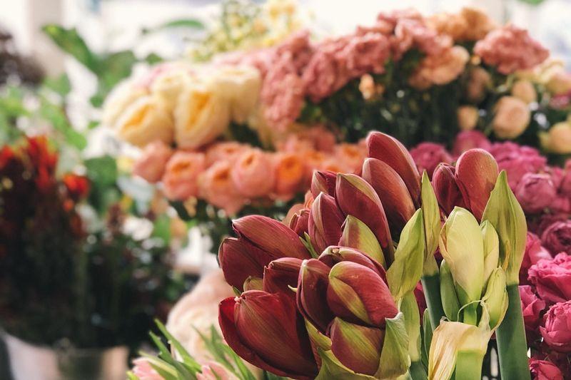 Blumenauswahl