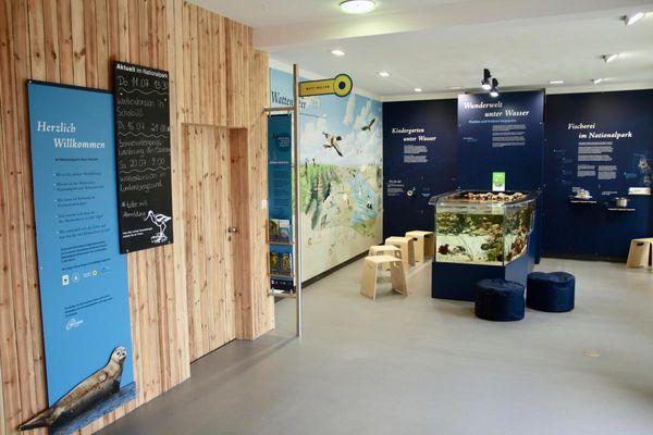Neue Ausstellung im Nationalpark-Haus Husum mit Aquarium