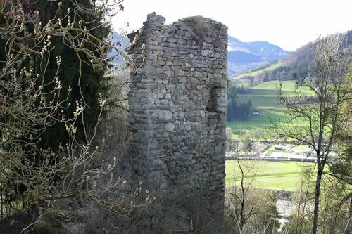Burgruine Grüneck
