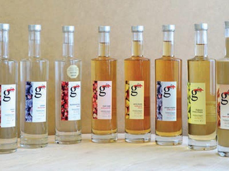 Destillerie Ragout
