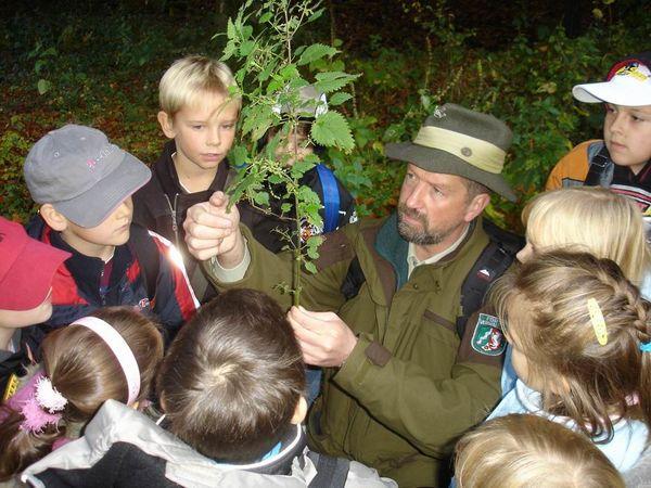 Rollende Waldschule