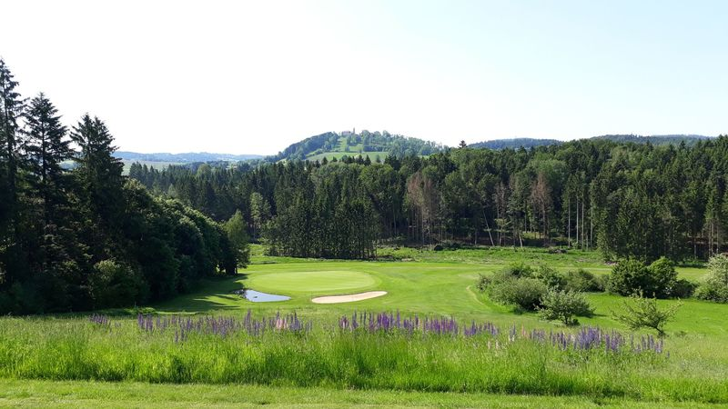 18-Loch Golf-Anlage des Golf- und Landclubs Bayerwald e.V.