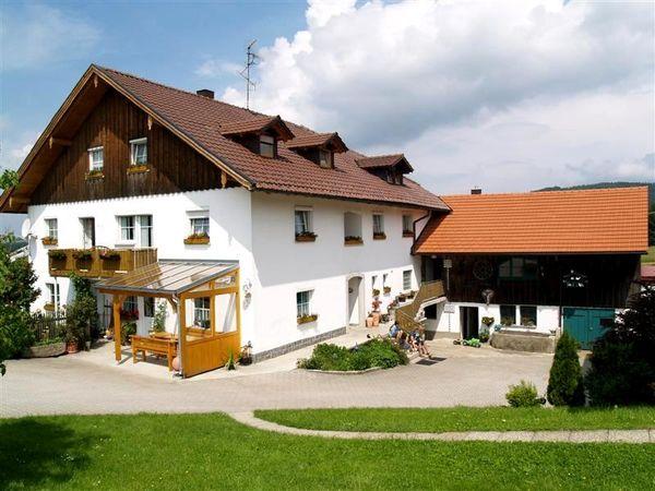 Blick auf den Traumhof Höpfl-Bauernhof in Pfifferhof bei Jandelsbrunn