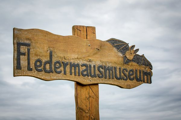 Fledermausmuseum Julianenhof, Foto: Florian Läufer